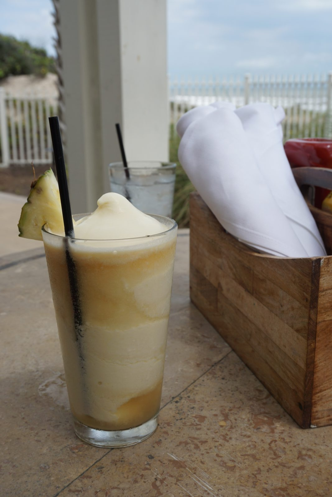 Welcome to Puppies and Piña Coladas!